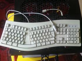 Gewinne eine tactx tastatur organisatorisches alienware forum